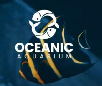 Atrações Novas em Balneário Camboriú. Oceanic Aquarium.